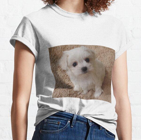 White Pure bred Maltese Classic T-Shirt