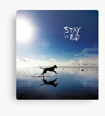 Stay Wild .7 Canvas Print
