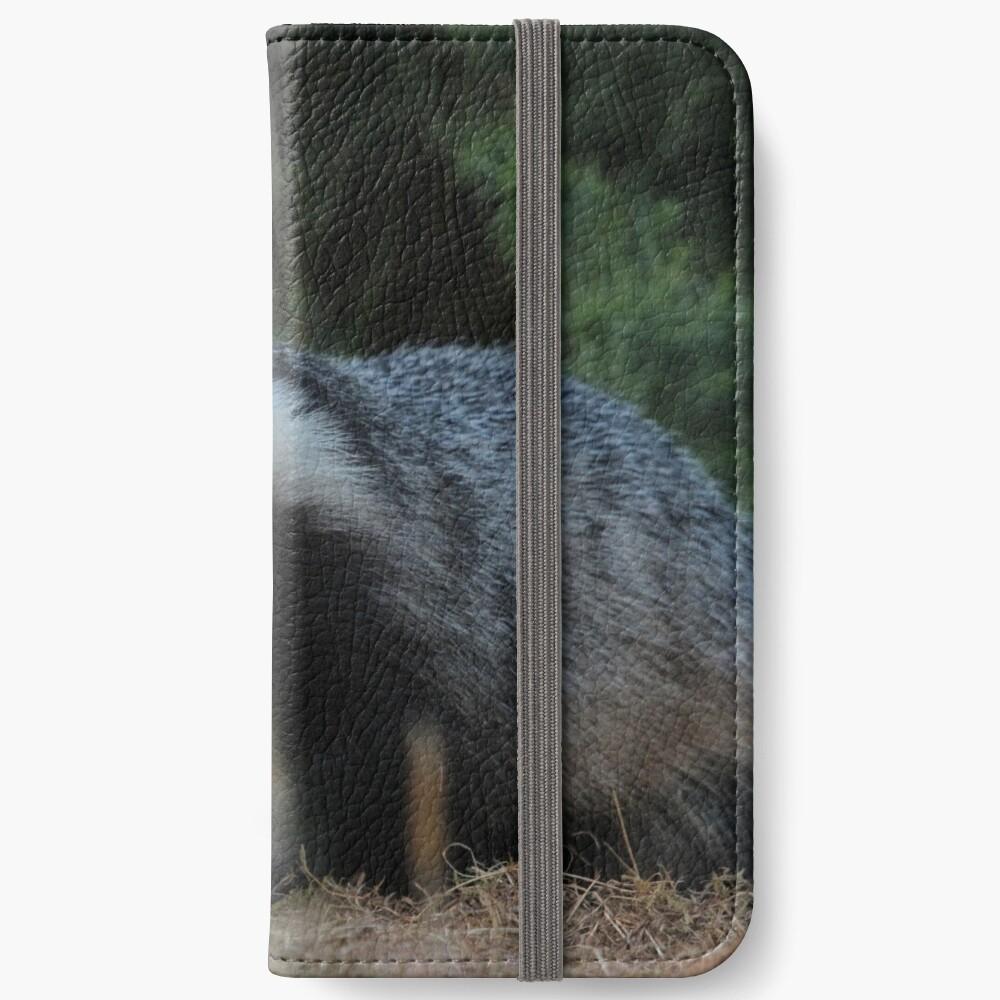 Badger iPhone Wallet
