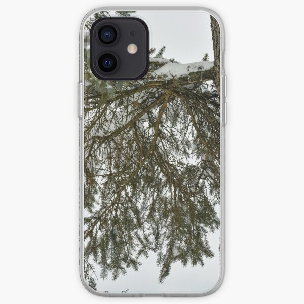 Snow Covered Pine Branch  iPhone Soft Case