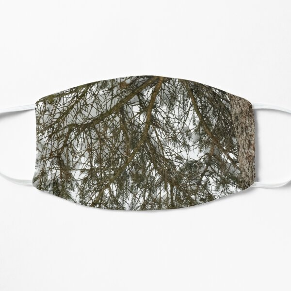 Snow Covered Pine Branch  Flat Mask