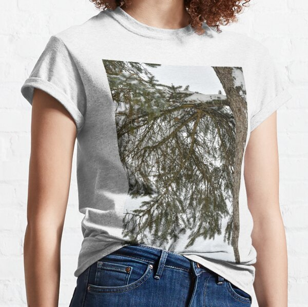 Snow Covered Pine Branch  Classic T-Shirt