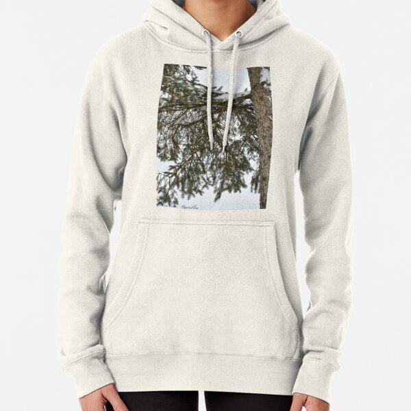 Snow Covered Pine Branch  Pullover Hoodie