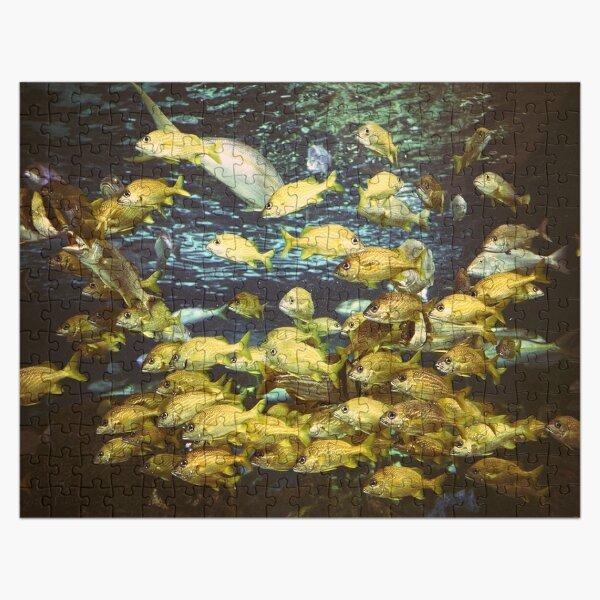 School of Fish Jigsaw Puzzle Jigsaw Puzzle