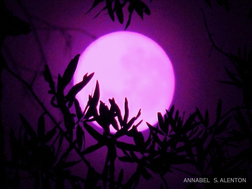 purple moon rising by ANNABEL   S. ALENTON