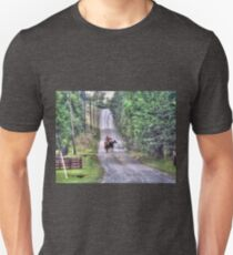 Horseback On A Country Road T-Shirt