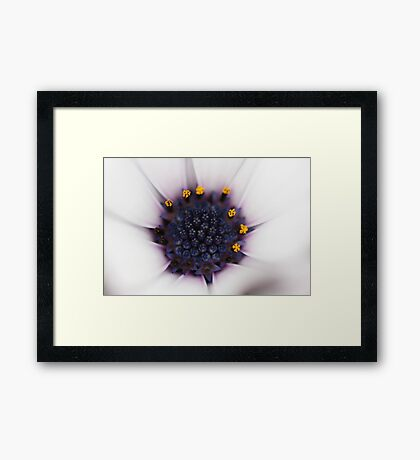 Middle View Framed Print