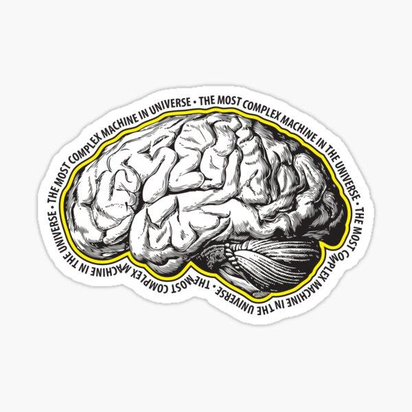 Brain. The Most Complex Machine in the Universe. Sticker