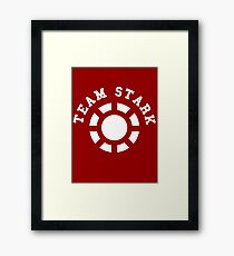 Team Stark - old reactor Framed Print