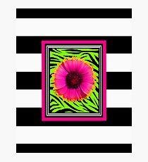 Pink & Green Wild Child Flower Photographic Print
