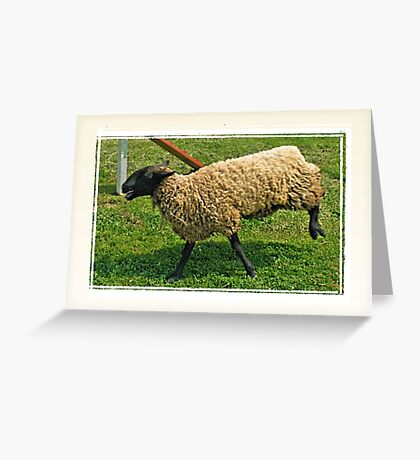 """""""With All New, 'Totallysheep Denture Gel', I Can Smile Again!""""... prints and products Greeting Card"""