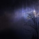 Thunder Clouds by Helmar Designs