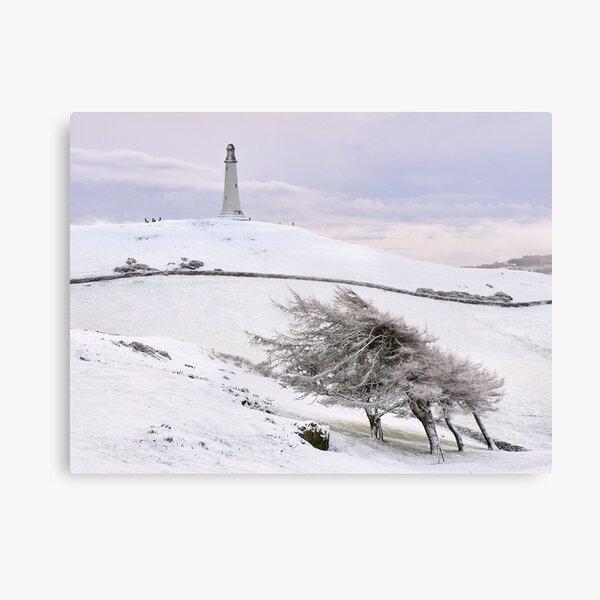Hoad Snow (landscape) Canvas Print