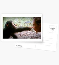 jane goodall Postcards