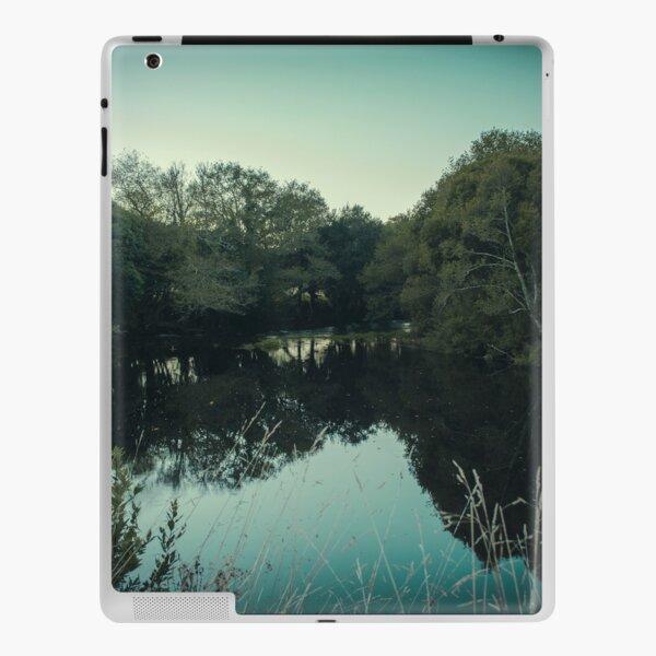 Moody green river iPad Skin