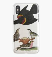 Alexander Wilson - Red Winged Starling Black Poll Warbler Lesser Red Poll iPhone Case/Skin