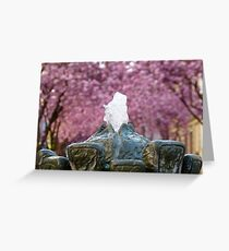Cherry Blossoms #2 Greeting Card
