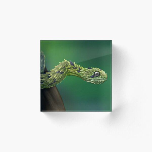 Bush Viper Acrylic Block