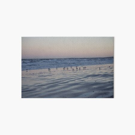 Winter Birds Coastal Sunset Art Board Print
