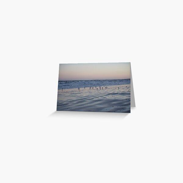 Winter Birds Coastal Sunset Greeting Card