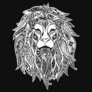 Lion by Jacqueline Eden
