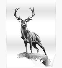 All Muscle - Red Deer Stag Poster