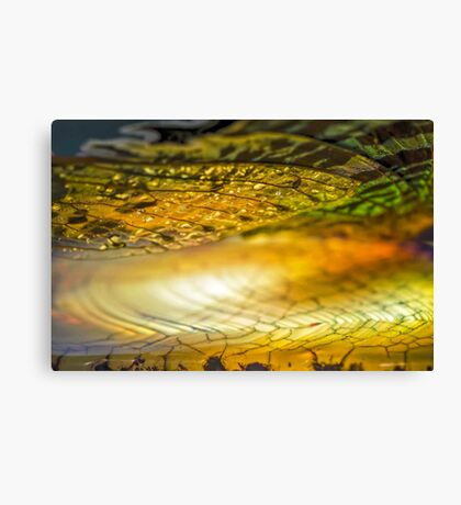 Clouds of Silk Canvas Print