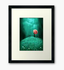 Rainy hill Framed Print