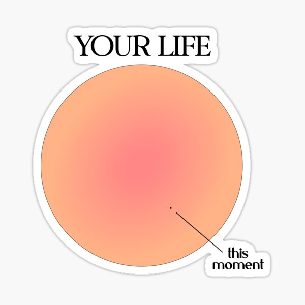 Your Life vs This Moment Visualization Sticker