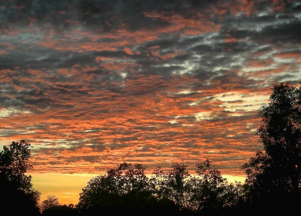 Kununurra Sunrise by V1mage