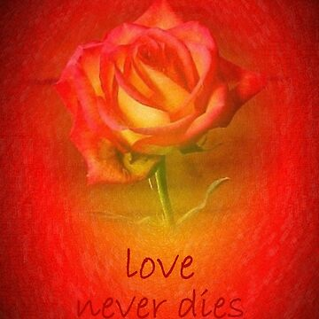 Love Never Dies by TurtleDove
