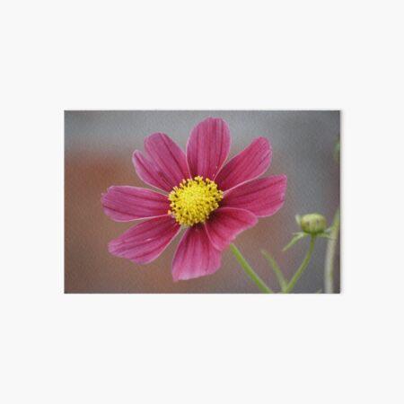Dahlia in Bloom Art Board Print
