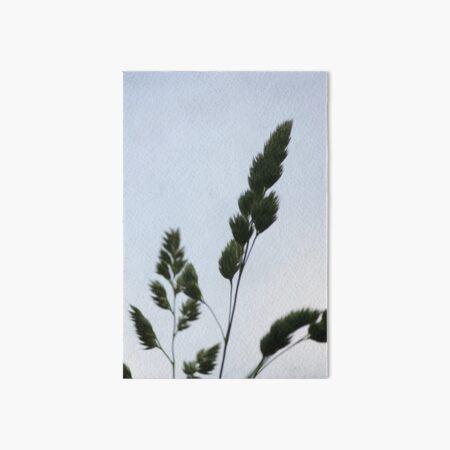 Tall Grass in Spring Art Board Print