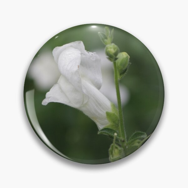 White Snapdragon in Rain Pin