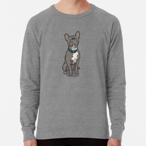 Französische Bulldogge mit türkisem Halsband Leichter Pullover