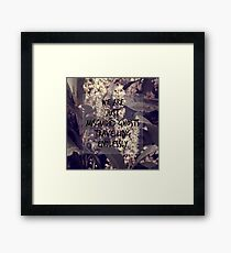 Misguided Ghosts Framed Print