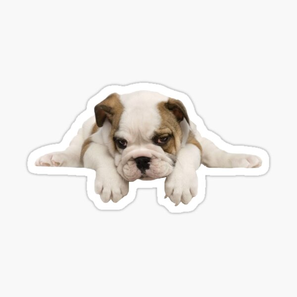 Bulldog Puppy Sticker