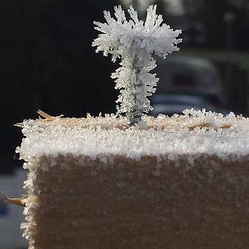 Frozen screw head  by Wokswagen