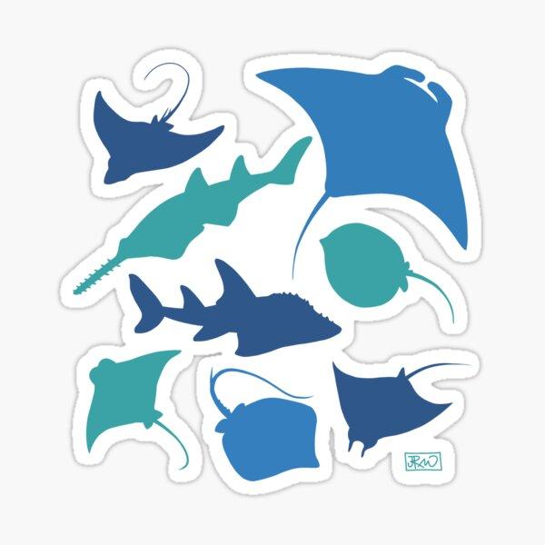 Rays! Sticker