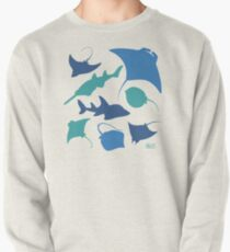 Rays! Pullover