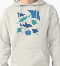 Rays! Pullover Hoodie