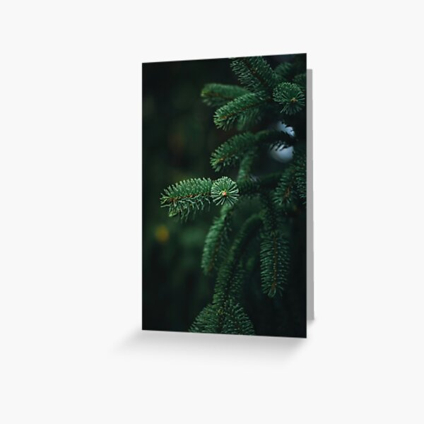 Close-up of green spruce branch. Full green frame with bokeh in the background., Shallow depth of field Greeting Card
