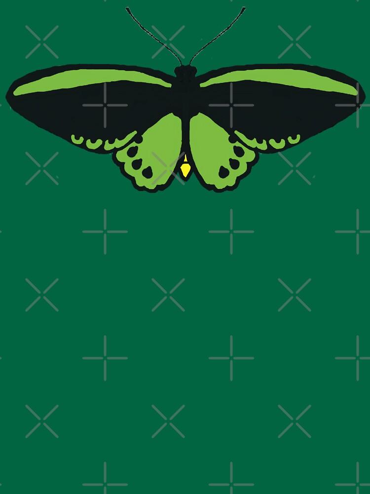Richmond Birdwing Butterfly by Birdwings1