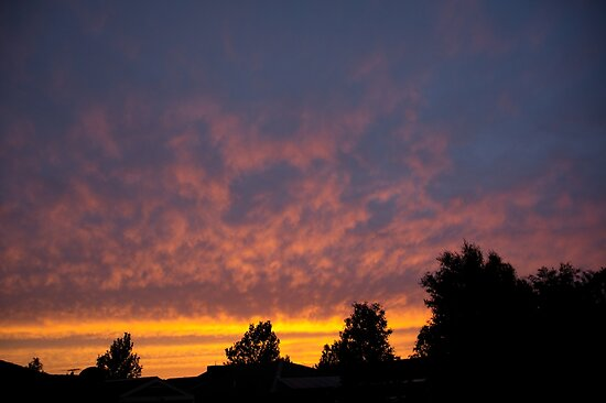 Sunset Colour. by cmthomas