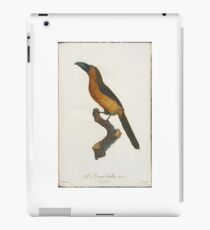 The gag Aracari iPad Case/Skin