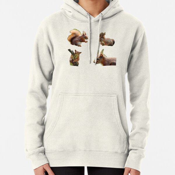 red squirrel Pullover Hoodie