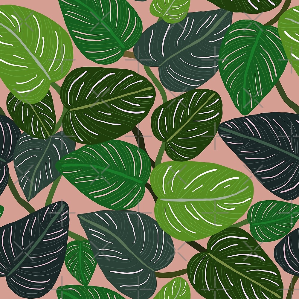 Tropical Pin-stripe Calathea Leaves Indoor Plant by Lozzie Eliza Designs