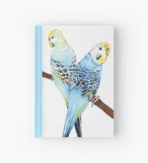 Blue Boys Hardcover Journal