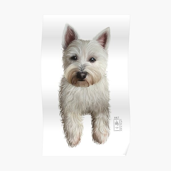 Baby Jazzy - The Westie Poster