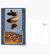 Precious Love Postcards